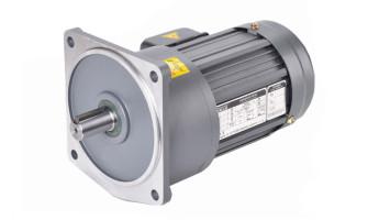 What is a Gear Motor?